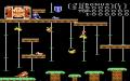 Donkey Kong Junior - Atari 7800