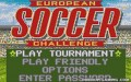 European Soccer Challenge - Atari Lynx