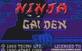 Ninja Gaiden - Atari Lynx